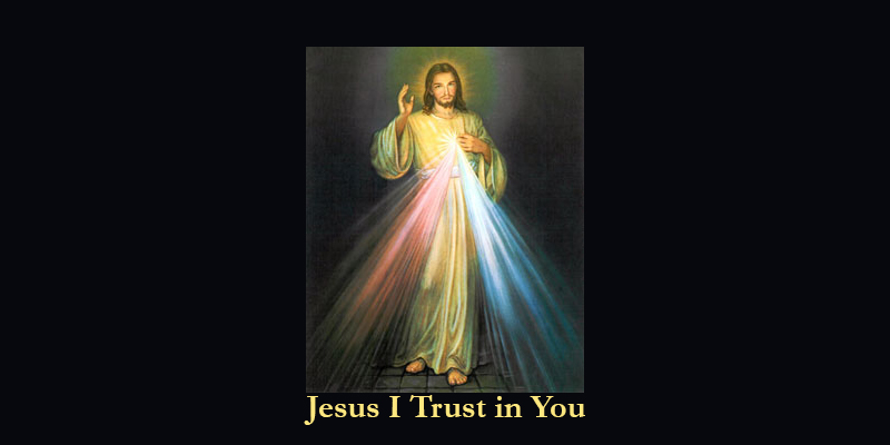 Thfe Divine Mercy Image: Jesus I Trust in You.
